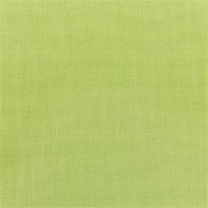 Canvas Parrot Green 5405-0000 Outdoor Fabric by Sunbrella