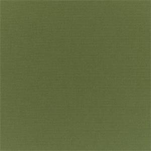 Canvas Palm Green 5421-0000 Outdoor Fabric by Sunbrella