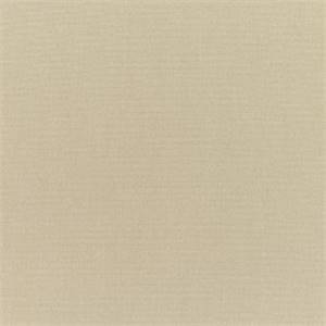 Canvas Antique Beige Tan 5422-0000 Outdoor Fabric by Sunbrella