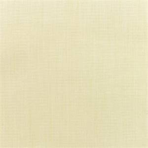 Canvas Vellum Ivory 5498-0000 Outdoor Fabric by Sunbrella