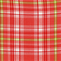 Nathaniel Plaid Poppy Red Cotton Drapery fabric