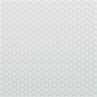 Frolic Dot Robins Egg Blue White Dot Upholstery Fabric by P Kaufmann
