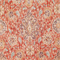 Sariz Cerise Red Washed Look Printed Floral Velvet Upholstery Fabric by P Kaufmann Swatch