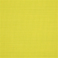 Echo Limelite Green 8078-0000 Solid Outdoor Fabric by Sunbrella