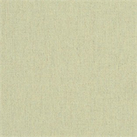 Heritage Moss Green 18012-0000 Solid Outdoor Fabric by Sunbrella