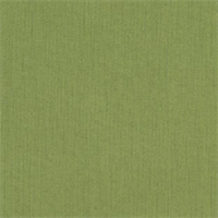 Spectrum Cilantro Green 48022-0000 Solid Outdoor Fabric by Sunbrella