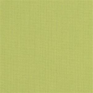 Spectrum Kiwi Green 48023-0000 Solid Outdoor Fabric by Sunbrella