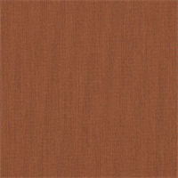 Canvas Paprika Orange 5451-0000 Outdoor Fabric by Sunbrella