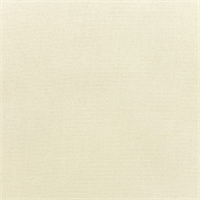 Canvas Canvas Ivory 5453-0000 Outdoor Fabric by Sunbrella