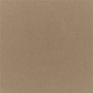Canvas Camel Tan 5468-0000 Solid Outdoor Fabric by Sunbrella