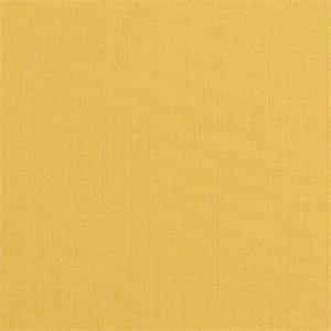 Spectrum Daffodil Yellow 48024-0000 Solid Outdoor Fabric by Sunbrella