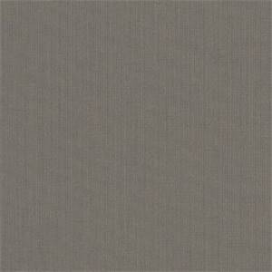 Spectrum Graphite Grey 48030-0000 Solid Outdoor Fabric by Sunbrella