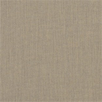 Spectrum Mushroom Grey 48031-0000 Solid Outdoor Fabric by Sunbrella