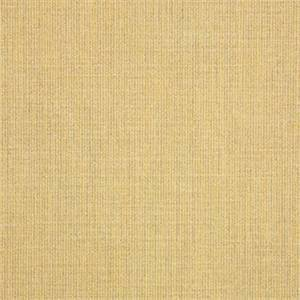 Spectrum Almond Tan 48082-0000 Solid Outdoor Fabric by Sunbrella