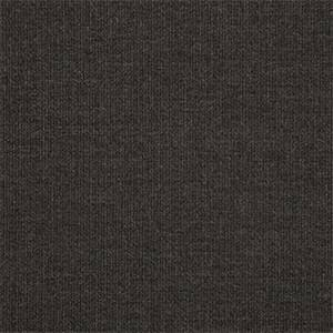 Spectrum Carbon Black 48085-0000 Solid Outdoor Fabric by Sunbrella