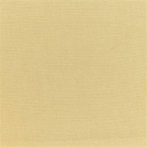 Sailcloth Shore Tan 32000-0003 Textured Solid Outdoor Fabric by Sunbrella