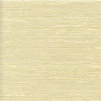 Tulsa Champagne Pale Gold  Drapery Fabric Swatch