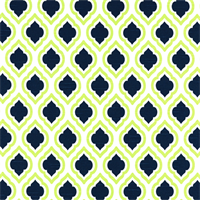Curtis Canal Slub Green Moroccan Tile Drapery Fabric by Premier Prints