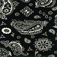 Yepes Panorama Tuxedo Paisley Drapery Fabric by Swavelle Mill Creek Swatch