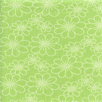 Asturias Panorama Spearmint Green Floral Drapery Fabric by Swavelle Mill Creek