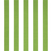 Outdoor Stripes Bay Green Fabric by Premier Prints