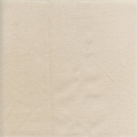 Belgium #5 Ivory Velvet Upholstery Fabric
