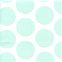Fancy Mint Twill Green by Premier Prints Drapery Fabric