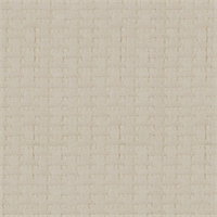 Marigot Natural Cotton Chenille Upholstery Fabric by Robert Allen Swatch