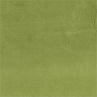 Belgium #45 Apple Green Velvet Upholstery Fabric Swatch