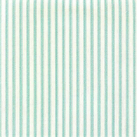 Berlin Aqua Green Ticking Cotton Print Drapery Fabric by Richtex Premium Prints Swatch