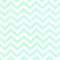 Zig Zag Mint Twill Chevron Print Drapery Fabric by Premier Prints