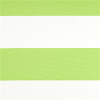 Cabana Kiwi Green Stripe Drapery Fabric by Premier Prints