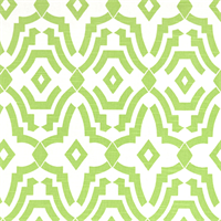 Chevelle Kiwi Slub Green Contemporary Print Drapery Fabric by Premier Prints