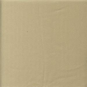 Enchante Champagne Gold Linen Blend Drapery Fabric by Braemore