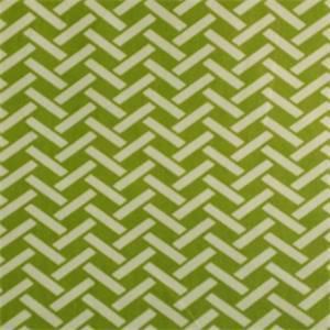 Rian Aloe Basket Print drapery Fabric
