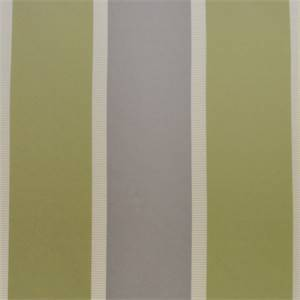 Andover Pistachio Green Stripe Drapery Fabric by P Kaufmann
