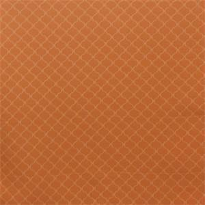 Oakley Tangerine by Richloom Platinum Fabrics