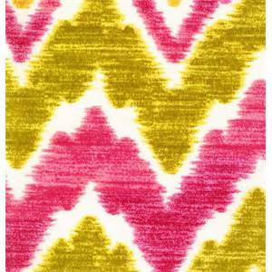Tiago Fredo Passion Fruit Outdoor Fabric by Swavelle Mill Creek Fabrics
