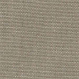 Canvas Taupe 5461-0000 by Sunbrella Fabrics
