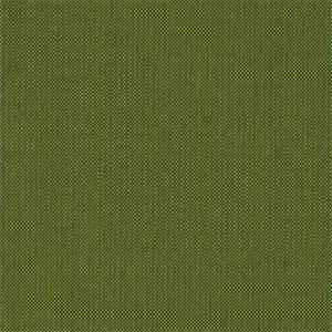 Spectrum Cilantro 48022-0000 by Sunbrella Fabrics