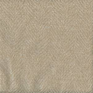 Baxter Birch Herringbone Drapery Fabric