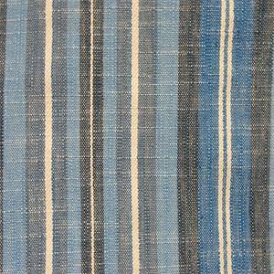 Fairholme Sea Drapery fabric by Richloom Platinum Fabrics