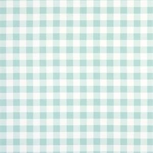 Plaid Canal Cotton Drapery Fabric by Premier Print Fabrics 30 Yard Bolt