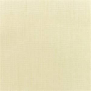 6 Yard Bolt Canvas Vellum Ivory 5498-0000 Outdoor Fabric by Sunbrella