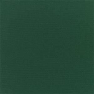 3 Yard Piece Canvas Forest Green 5446-0000 Outdoor Fabric by Sunbrella