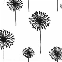 Dandelion White Black by Premier Prints - Drapery Fabric